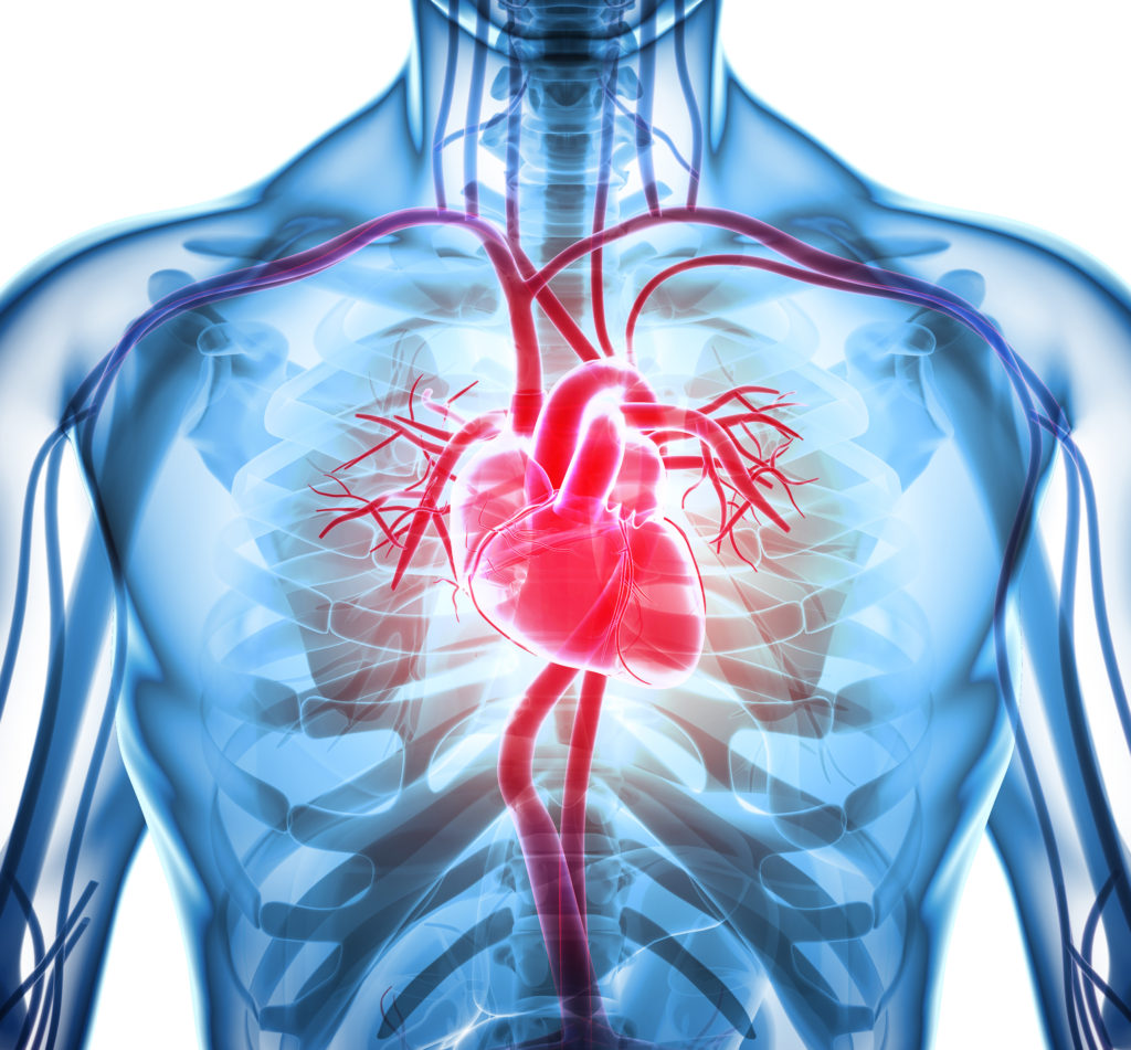 Do you know your cardiovascular risk?