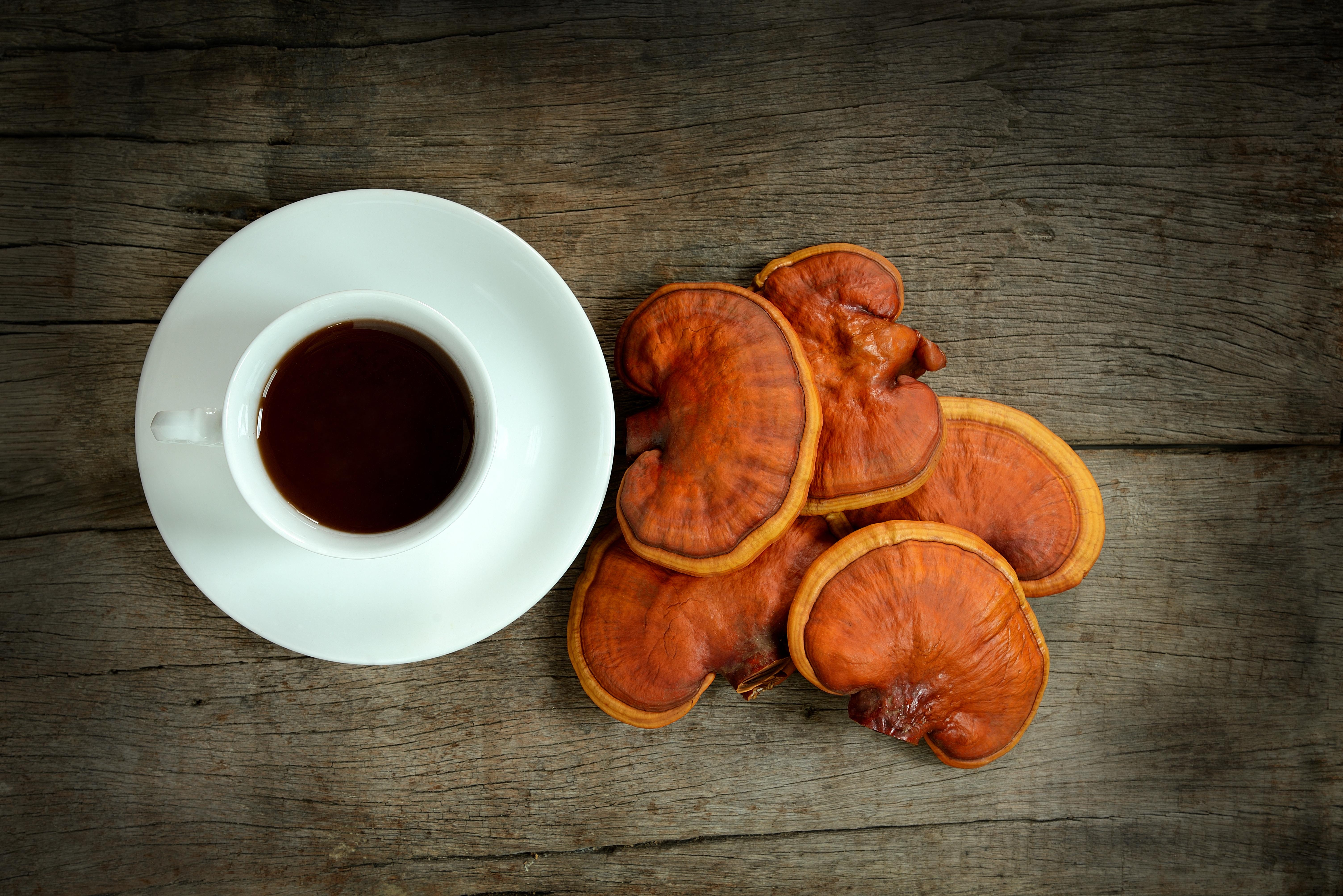 Functional Mushrooms: The Secret to Longevity